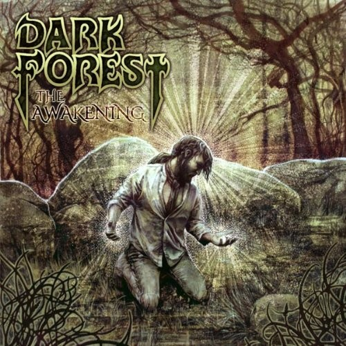 dark-forest-the-awakening