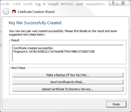 Figure 11: Summary of newly created certificate