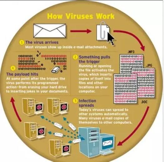 Fact About Computer Virus Explain - Full Guide of Virus in Hindi 1