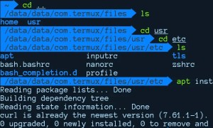 How to Customize Termux, Make Termux terminal look Awesome - ANCII, Color, Font, Style 4
