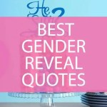 The Best Gender Reveal Quotes And Sayings Darling Celebrations