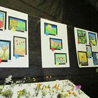 2013 Darling Willdflower Show - Speciemen Table