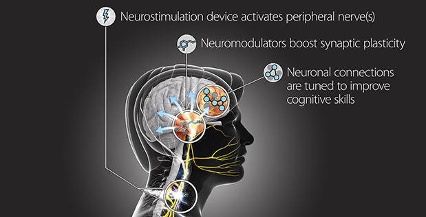 As envisioned by DARPA, the external TNT device will deliver safe and precise stimulation through the skin at specific points in the training process to release neuromodulators that promote synaptic plasticity. This triggered reorganization of neuronal connections in response to specific experiences is expected to accelerate learning and support long-term retention of learned skills.
