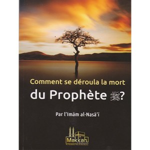 comment-se-deroula-la-mort-du-prophete-imam-al-nasa-i-makkah-al-mukarramah