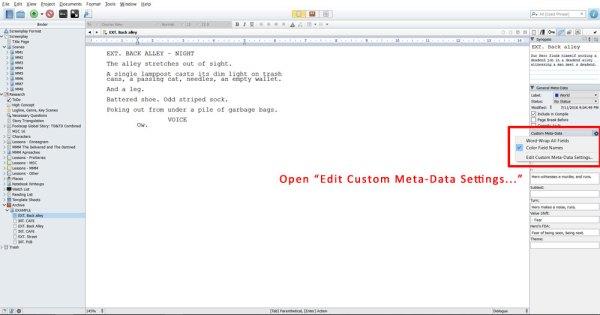 Open Edit Custom Meta Data Settings