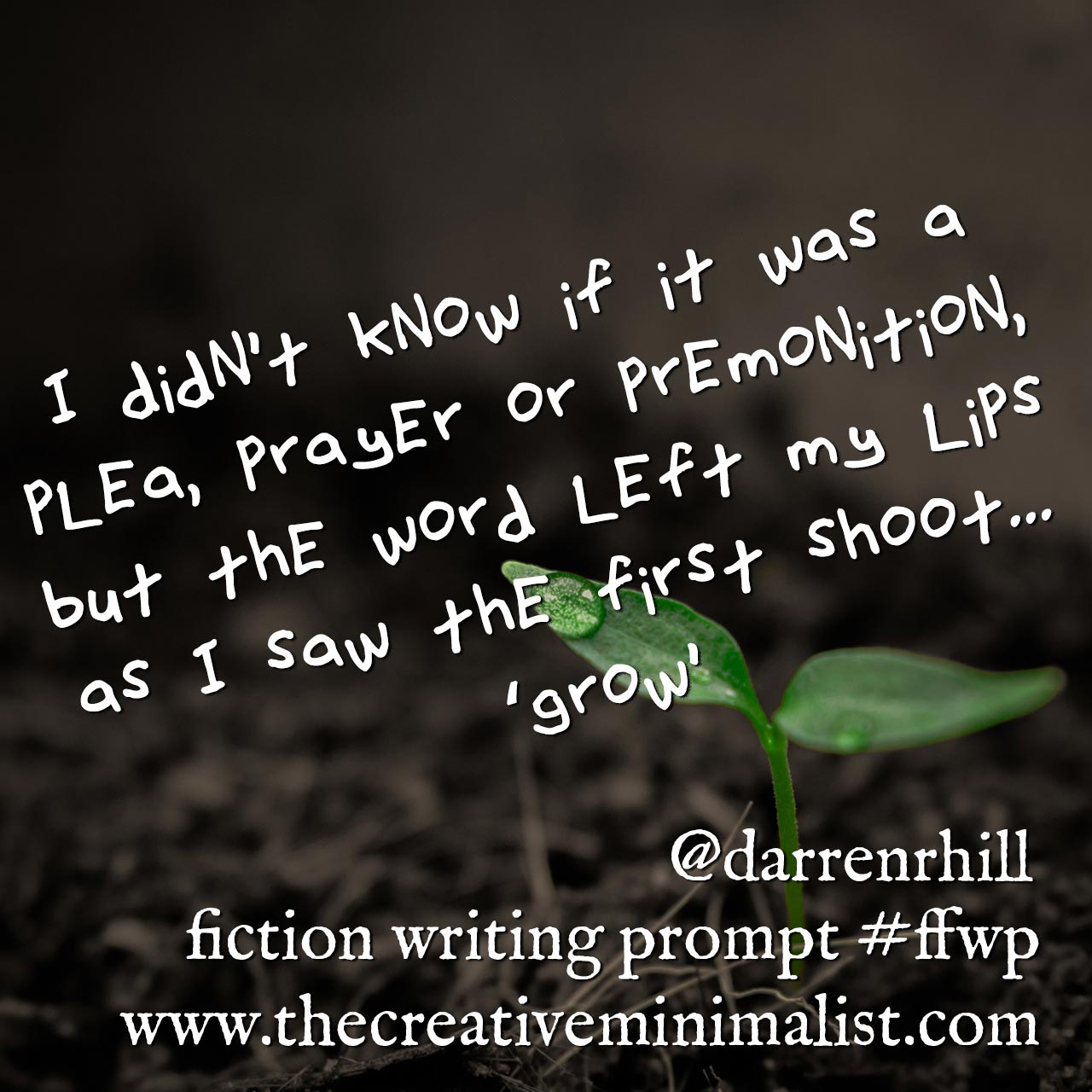 I didn't know if it was a plea, prayer or premonition, but the word left my lips as I saw the first shoot... 'grow' - Friday Fiction Writing Prompt