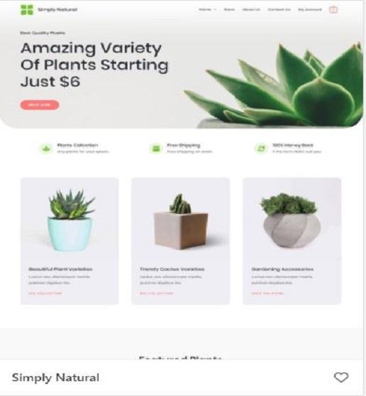 Plant-Store
