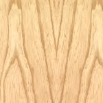 Swamp Ash close up