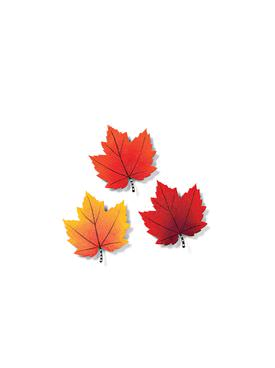 maple-leaf-magnets
