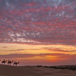 Crimson Desert by Suresh U T