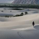 Ladakh - Nubra Photographer