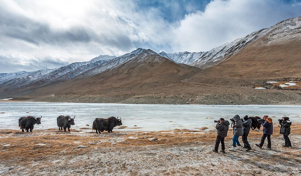 ladakh-winter-113