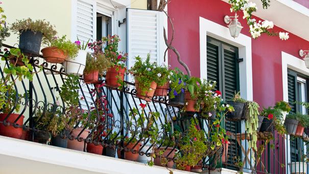 Un balcon orné de jardinières, de plantes et d'arbustes jouera un rôle de barrière végétale