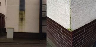 Fasado apsauga nuo zaliavimo