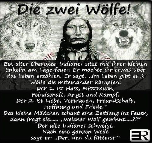 Die Zwei Wölfe Weisheit Der Cherokee Indianer Das Neue Ich