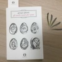 Da leggere Gli occhi vuoti dei santi di Giorgio Ghiotti