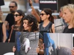 Manifestazione Essere Animali