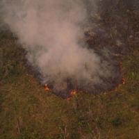 L'Amazzonia registra ancora numerosi roghi