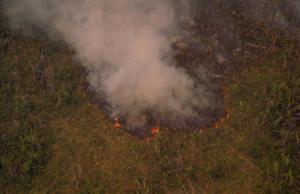 Amazzonia che brucia