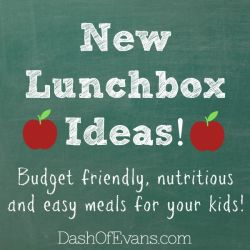 New Lunchbox Ideas: Budget Friendly, Nut...