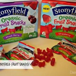 Tasty New Treat: Stonyfield Fruit Snacks...