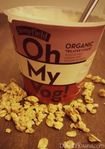 New Oh My Yog! layered yogurt from Stonyfield! Try the Apple Cinnamon! @DashOfEvans www.dashofevans.com