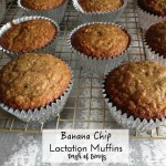 Calling all Nursing Mamas: Super Easy Lactation Muffins