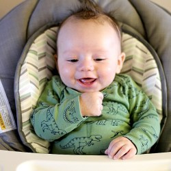 Transitioning to Solid foods with a busy...