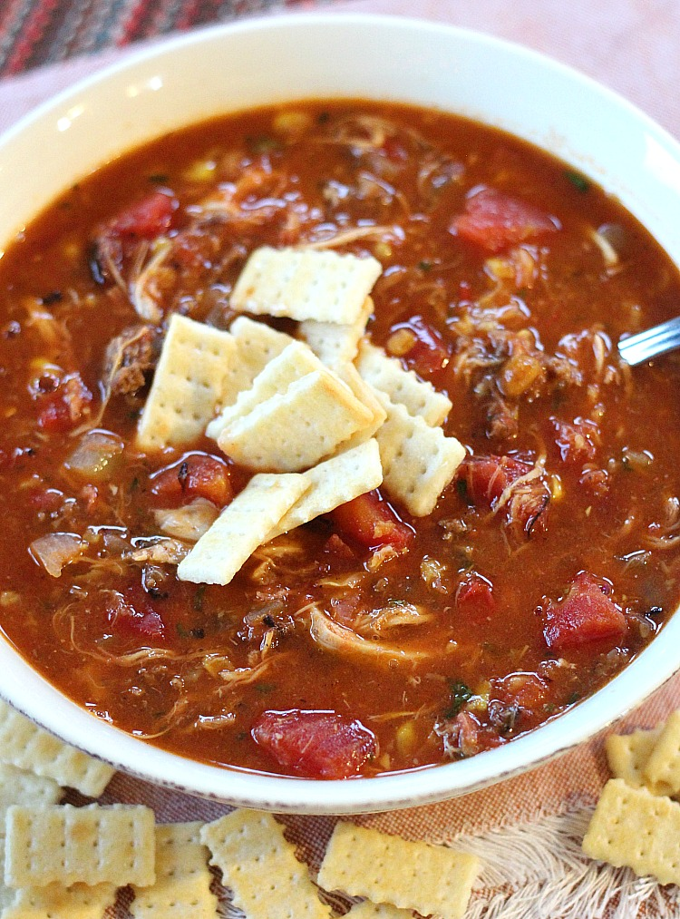 This filling game day favorite is perfect for your hungry guests: Brunswick Stew! Packed with pulled pork, ground beef and shredded chicken this is the BEST stew for game day. via @DashOfEvans