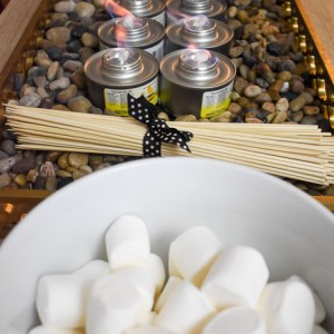 Make Your Own S'Mores Bar