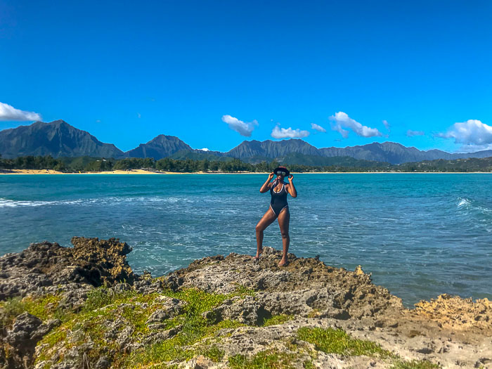 Dash of Jazz on Popoia Island Bird Sanctuary Kailua Oahu Hawaii