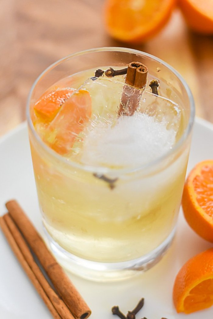 fall gin & tonic cocktail in rocks glass surrounded by cinnamon sticks, clove buds, and orange slices