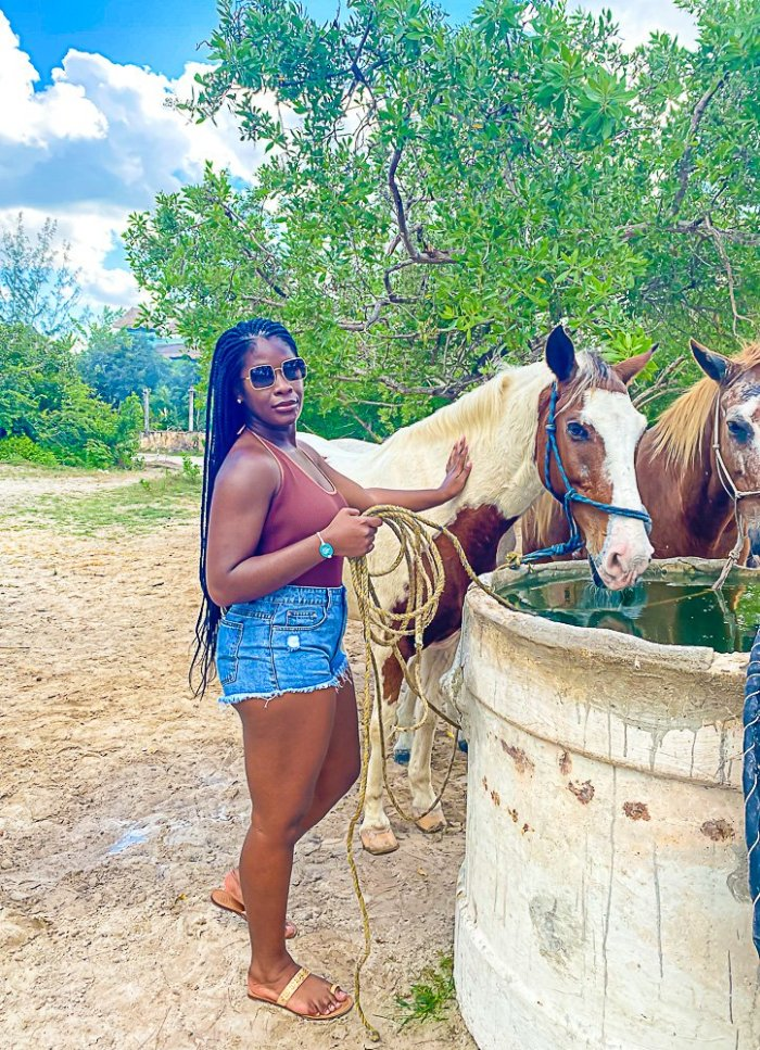 Jazzmine petting horse