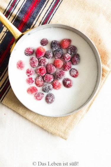 cranberries (2 von 1)