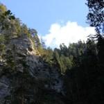Farchant - Waldlehrpfad Entdeckungen 11