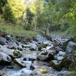Farchant - Waldlehrpfad Entdeckungen 14
