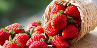 selai strawberry kiloan