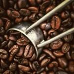 cara roasting kopi tradisional