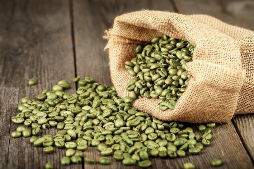 proses pengolahan kopi hijau