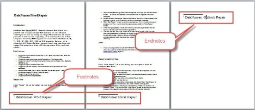 example of endnotes in a paper