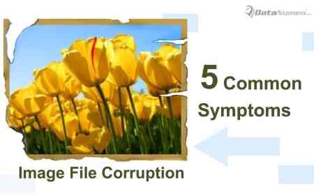 5 Most Common Symptoms of Image File Corruption
