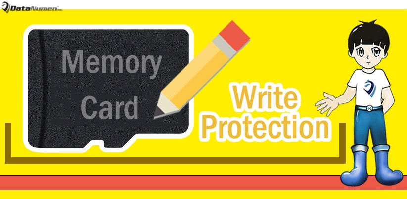A Deep Insight into the Write Protection Function in Memory Cards