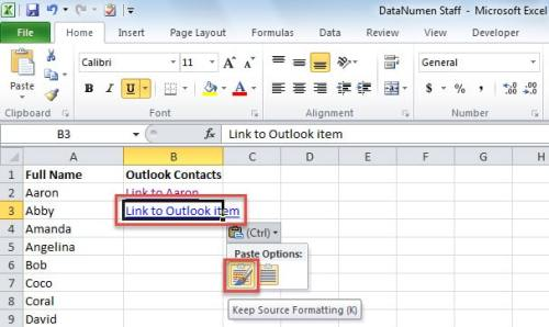 Paste OneNote Link to Cell