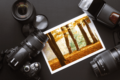 The Ultimate Guide to Protect Your Digital Photos