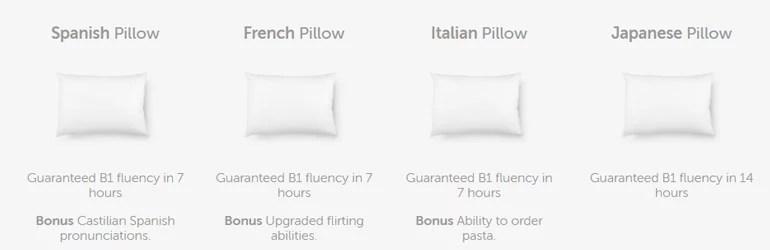 Duolingo Pillow April Fool