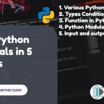 Learn Python Essentials in 5 Minutes