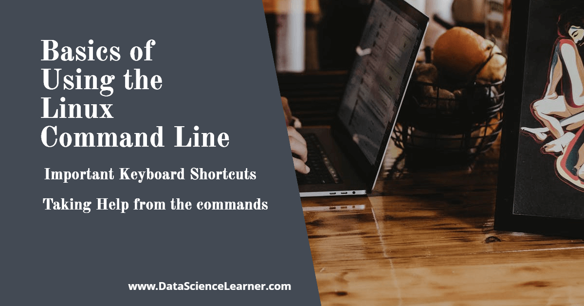 Basics of Using the Linux Command Line