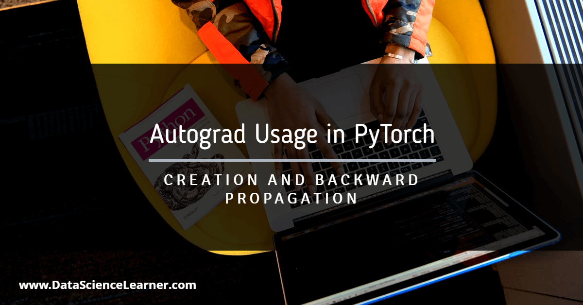 Autograd Usage in PyTorch