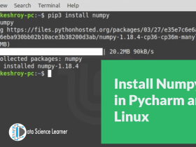 Install Numpy in Pycharm and Linux