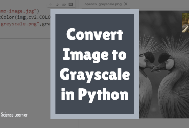 Convert Image to Grayscale in Python